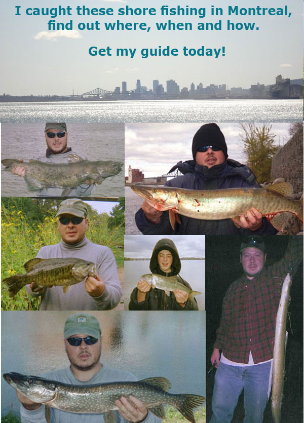 Buy the Freshwater Phil guide to Montreal's fishing spots